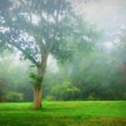 Landscape Beauty Poster