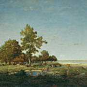 Landscape With A Clump Of Trees Poster