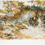 Landscape With Palmettos Poster