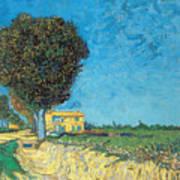 Lane Near Arles Poster
