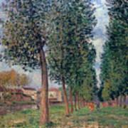 Lane Of Poplars At Moret Poster