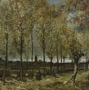 Lane With Poplars Near Nuenen Poster