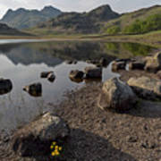 Langdale Pikes And Blea Tarn Poster