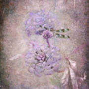 Lantana In Purple Poster
