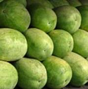 Large Heavy  Watermelons Poster