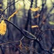 Last Bit Of Fall Poster