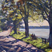 Late Afternoon At Niawanda Park Poster