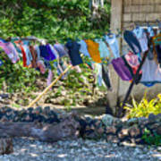 Laundry Drying In The Wind Poster
