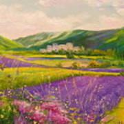 Lavender Fields Landscape Poster