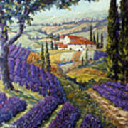 Lavender Fields Tuscan By Prankearts Fine Arts Poster