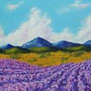 Lavender In Provence Poster