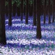 Lavender Woodland Poster
