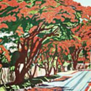 Lawson Avenue Flamboyants Poster