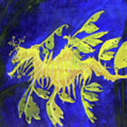 Leafy Sea Dragon 1 Poster by Lucien Van Oosten