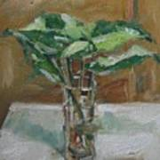 Leaves In A Tall Glass Poster