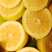 Lemon Still Life Poster