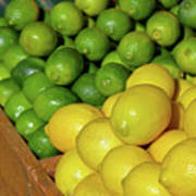 Lemons And Limes At Market Poster