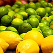 Lemons And Limes Poster