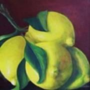 Lemons Poster by Dana Redfern