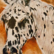 Leopard Appy Poster