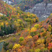 Letchworth Falls Sp Fall Colored Gorge Poster