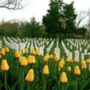 Life And Death At Arlington Poster