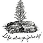LIfe Always Finds A Way Poster