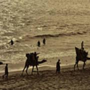 Life Near The Arabian Sea Poster