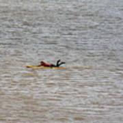 Lifeguard Training Poster
