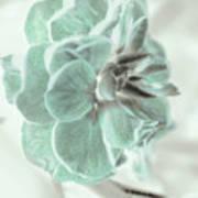 Light Green Blossom Poster