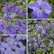 Light Purple Flowers Collage Poster