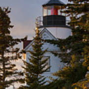 Lighthouse At Bass Harbor Poster