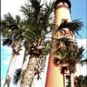 Lighthouse Palms Poster