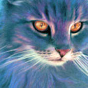 Lilac Cat Poster