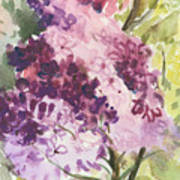 Lilacs - Note Card Poster