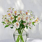 Lilies In A Vase 001 Poster