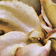 Lily In The Garden Neutral Poster