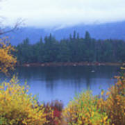 Lily Pond Autumn Kancamagus Highway Poster