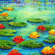 Lily Pond Poster