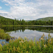 Lily Pond - White Mountains, New Hampshire Poster