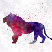 Lion 01 In Watercolor Poster