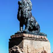 Lion At San Xavier Mission - Tucson Arizona Poster