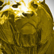 Lion Gold Poster