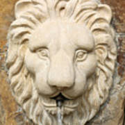 Lion Head Fountain Poster