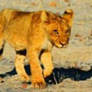 Lion - Id 16235-220310-4716 Poster