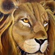 Lion Male Poster