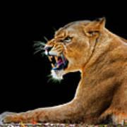 Lion On Black Poster