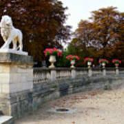 Lion Sculptue Luxembourg Garden Paris France Poster