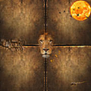 Lion Sun Poster