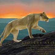 Lioness Arising Poster
